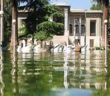 iran , shiraz , afif abad garden